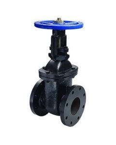 Cast Iron Gate Valve Flanged 3""