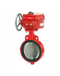 Cast Iron Wafer Butterfly Valve 21/2""