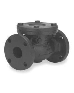 "Check Valve 6"" Cast Iron Flanged"